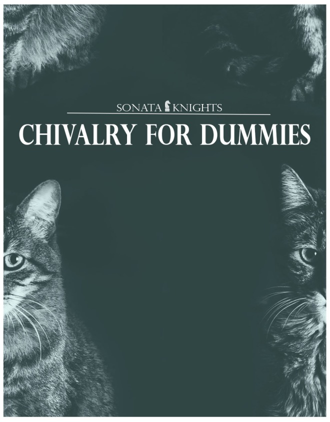 02.Chivalry for Dummies